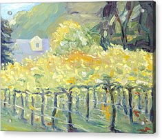 Morning In Napa Valley Acrylic Print