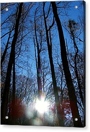 Morning In The Mountains Acrylic Print