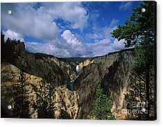 Morning In Yellowstone Acrylic Print by Stan and Anne Foster