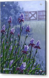 Morning Iris Acrylic Print by Richard De Wolfe