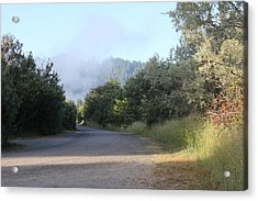 Morning Light By The Russian River Acrylic Print by Remegio Onia