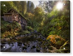 Morning Light Cedar Creek Grist Mill Acrylic Print by David Gn