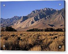 Morning Light Eastern Sierra Acrylic Print by Don Kreuter