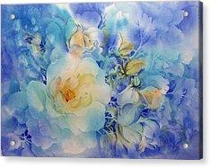 Morning-light Acrylic Print by Nancy Newman