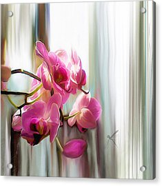 Morning Light Orchids Acrylic Print