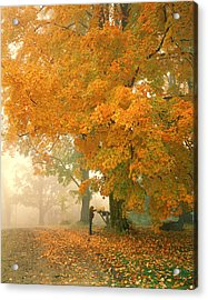 Morning Mail Cambridge Vermont Acrylic Print by George Robinson