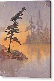 Morning Mist Acrylic Print by Debbie Homewood