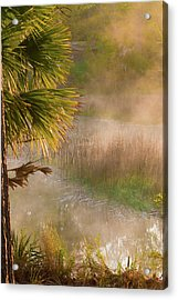 Acrylic Print featuring the photograph Morning Mist by Margaret Palmer