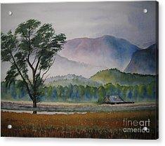 Morning Mist Acrylic Print by Shirley Braithwaite Hunt