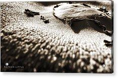 Morning Mushroom Top Acrylic Print
