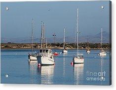 Morning On Morro Bay B3984 Acrylic Print