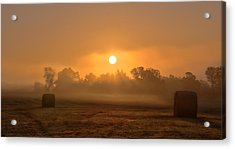 Morning On The Farm Acrylic Print by Ron  McGinnis