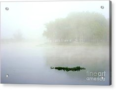 Morning On The Parana Acrylic Print