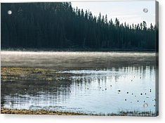 Morning On Wilson Lake  Acrylic Print