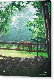 Morning Pasture Acrylic Print by Jack Skinner