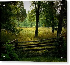 Morning Pasture Acrylic Print by Robert Clayton
