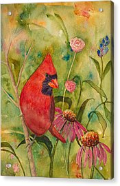 Morning Perch In Red Acrylic Print