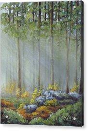Morning Rays Acrylic Print by Debra Davies