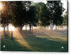 Morning Rays Acrylic Print