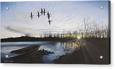 Morning Retreat - Pintails Acrylic Print