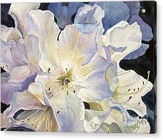 Morning Shadows   Sold Prints Available Acrylic Print