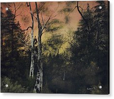 Morning Acrylic Print by Shawn Cooper