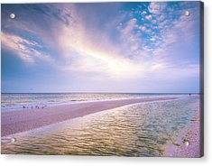Acrylic Print featuring the photograph Morning Show by Steven Ainsworth