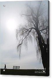 Morning Sun Tries To Break Through The Mist. Acrylic Print by Emilio Lovisa