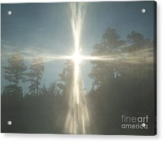 Morning Sunlight Acrylic Print