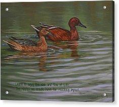 Morning Swim Acrylic Print by Kathleen Hill