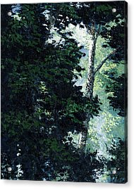 Morning Trees Acrylic Print by Paul Illian