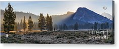 Morning Tuolomne  Acrylic Print