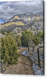 Acrylic Print featuring the photograph Morning Walk by Alan Toepfer