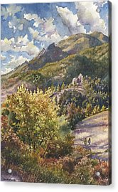 Morning Walk At Mount Sanitas Acrylic Print by Anne Gifford
