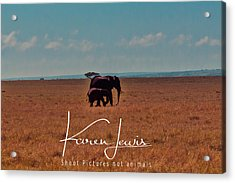 Acrylic Print featuring the photograph Morning Walk by Karen Lewis
