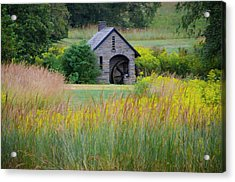 Acrylic Print featuring the photograph Morris Arboretum Mill In September by Bill Cannon