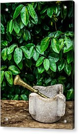 Mortar And Pestle Acrylic Print by Marco Oliveira