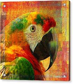 Mosaic Macaw 2016 Acrylic Print