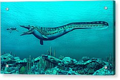 Mosasaurs Acrylic Print by Walter Colvin