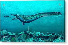 Mosasaurs Acrylic Print