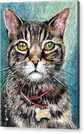 Moses Acrylic Print by Melissa J Szymanski