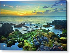 Acrylic Print featuring the photograph Moss Covered Rocks At Sunset In Molokai by Tara Turner