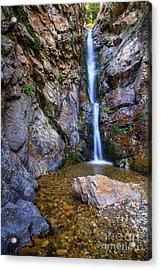 Moss Ledge Waterfall Acrylic Print
