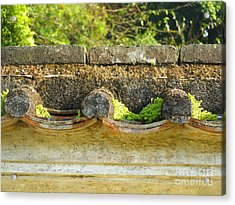 Moss On An Old Chinese Roof Acrylic Print by Kathy Daxon