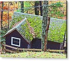 Moss Roof Acrylic Print by Beebe  Barksdale-Bruner