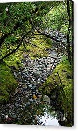 Moss Stream Acrylic Print