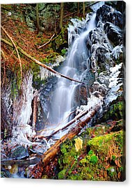 Mossy Cascade Falls Acrylic Print