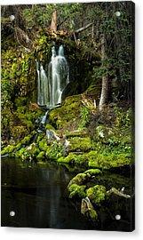 Mossy Falls Acrylic Print