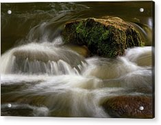 Acrylic Print featuring the photograph Mossy Foam by Timothy McIntyre