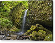 Mossy Grotto Falls In Summer Acrylic Print by David Gn